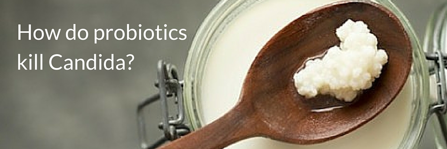 How do probiotics kill Candida