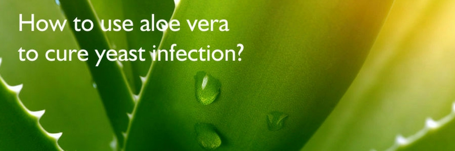 How to use aloe vera for a yeast infection