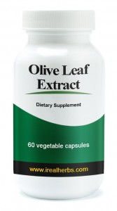 Real Herbs olive leaf extract