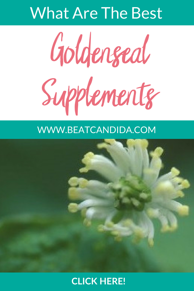 How to use Goldenseal for a Yeast Infection