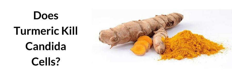 Does Turmeric Kill Candida Cells