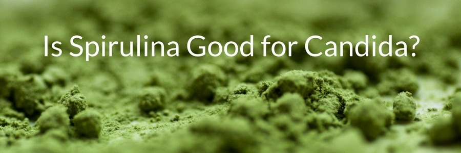 Is Spirulina Good for Candida-