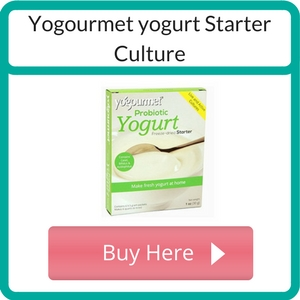 Where to Buy a Yogurt Starter Culture_ (1)